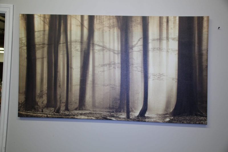 Brown trees canvas available for lease at Pittsburgh Furniture Leasing